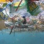 20090422-tows-fabien-cousteau-1-290x218